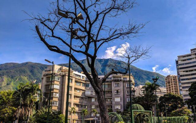 Plaza Francia Altamira - Caraqueño