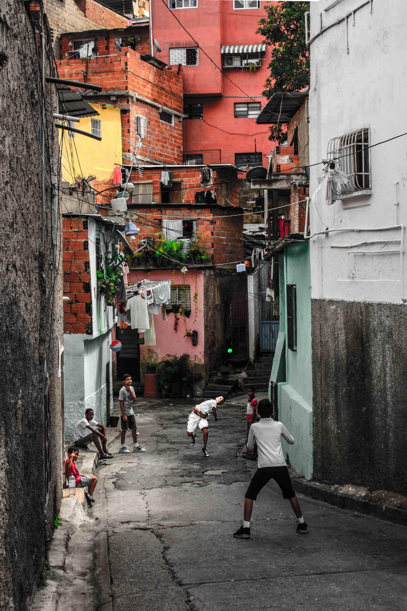 Caiman - Caraqueño